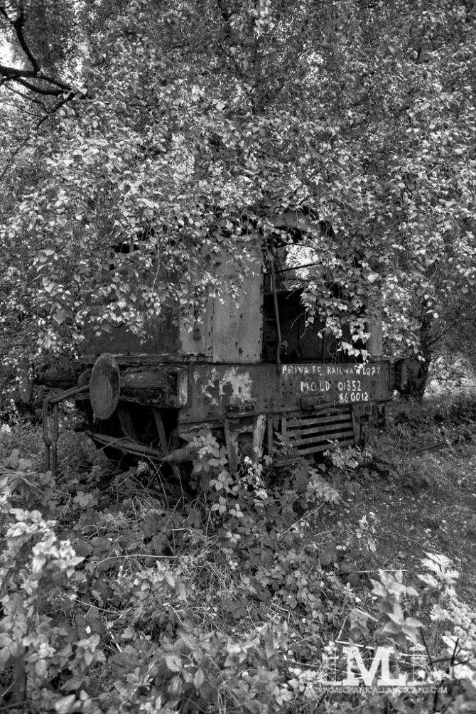 DSCF1956-Edit